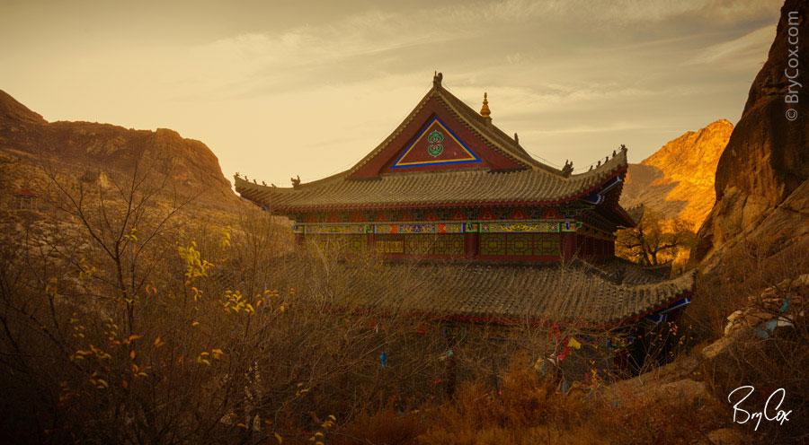 BryCox_Mongolia2015_315