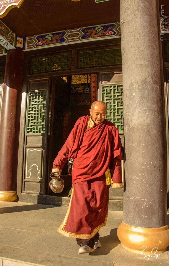 BryCox_Mongolia2015_326