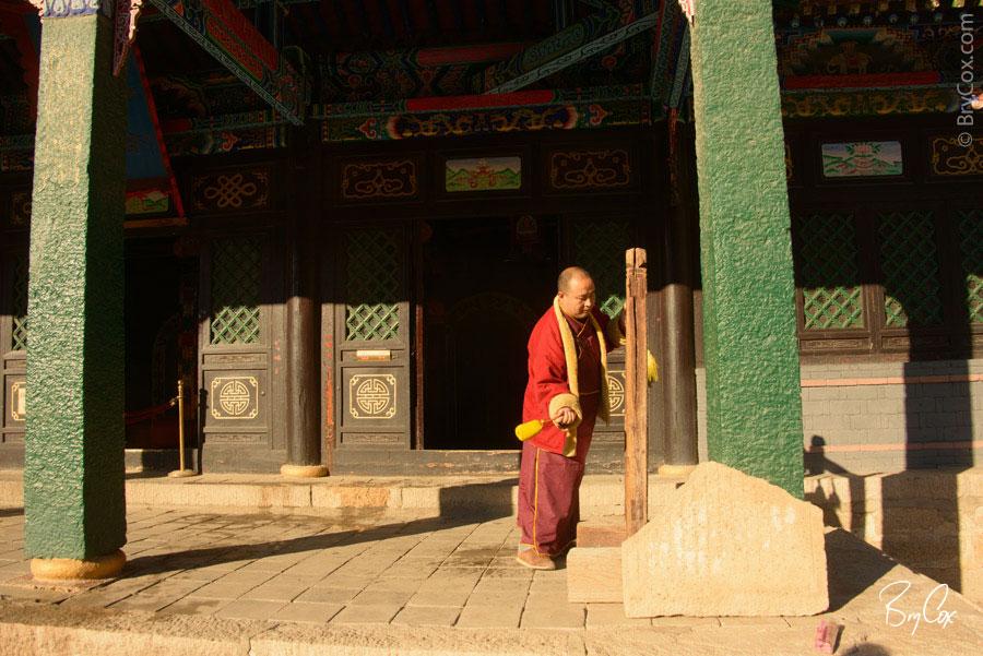 BryCox_Mongolia2015_328