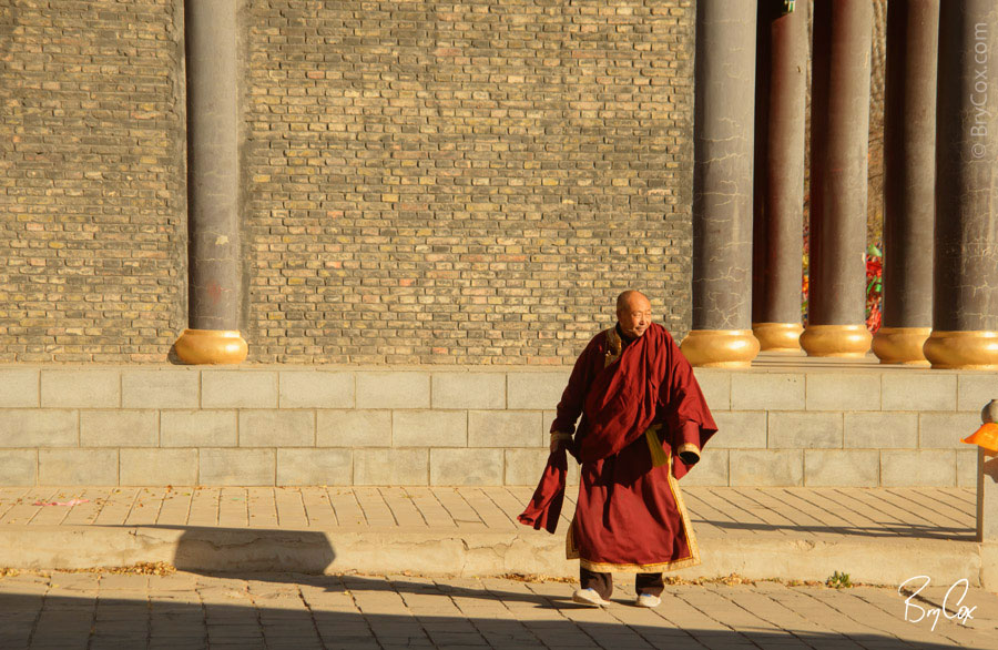 BryCox_Mongolia2015_331