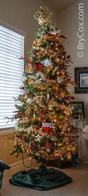 Cox_Christmas2013-114