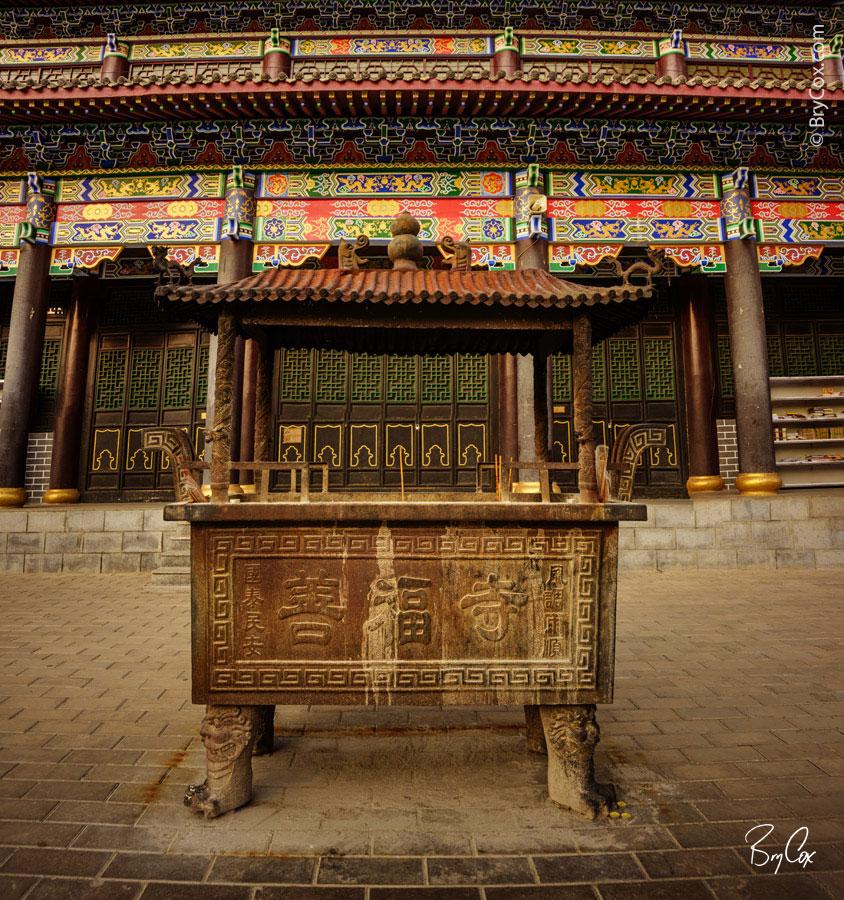BryCox_Mongolia2015_314