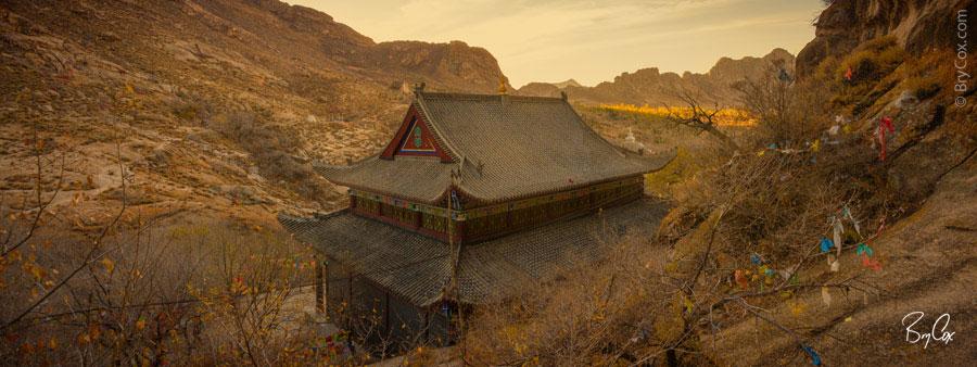 BryCox_Mongolia2015_316