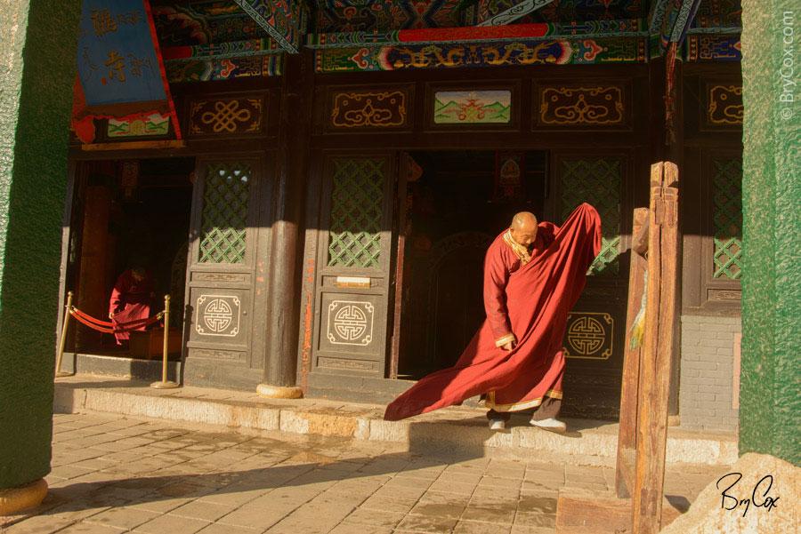 BryCox_Mongolia2015_329